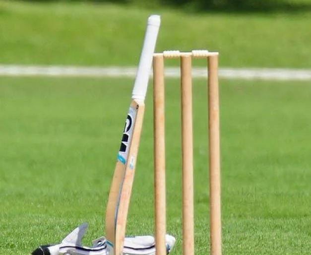 ভারতের হয়ে আন্তর্জাতিক ক্রিকেট খেলা এই ৪ ক্রিকেটারের হয়েছে বিদেশে জন্ম 2