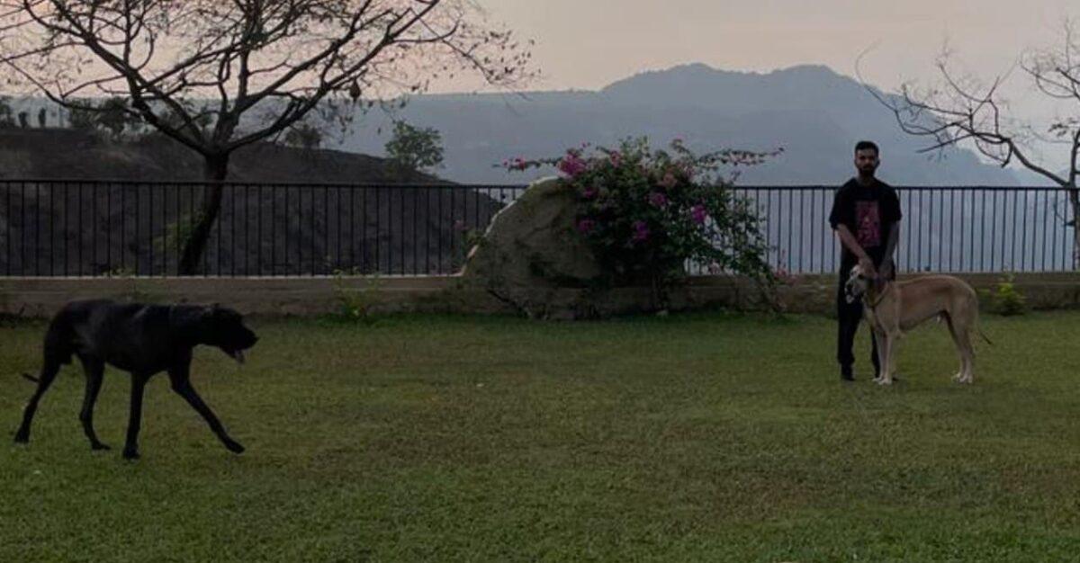 দেখুন : পেটের সমস্যা কাটিয়ে দ্রুত সুস্থ হয়ে উঠছেন কে এল রাহুল, অভিনব প্রস্তুতিতে মাতলেন 1